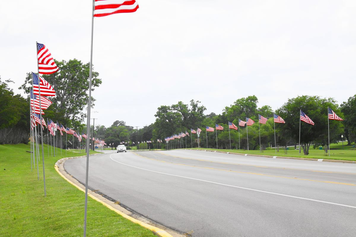 Rows of American Flags Line a Road